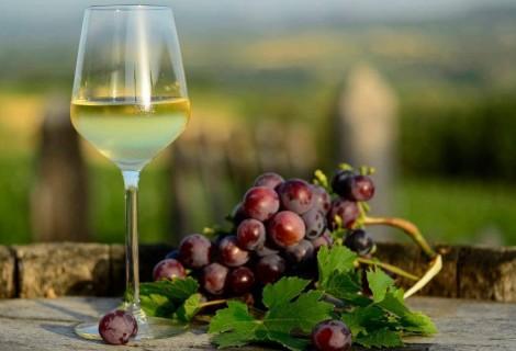 Vinska tura Šumadija