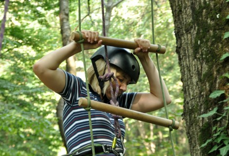 Soft Team Building Adventures in Fruska Gora