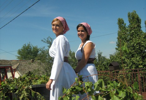 Monasteries, Wines and Gastronomy of Serbia 1
