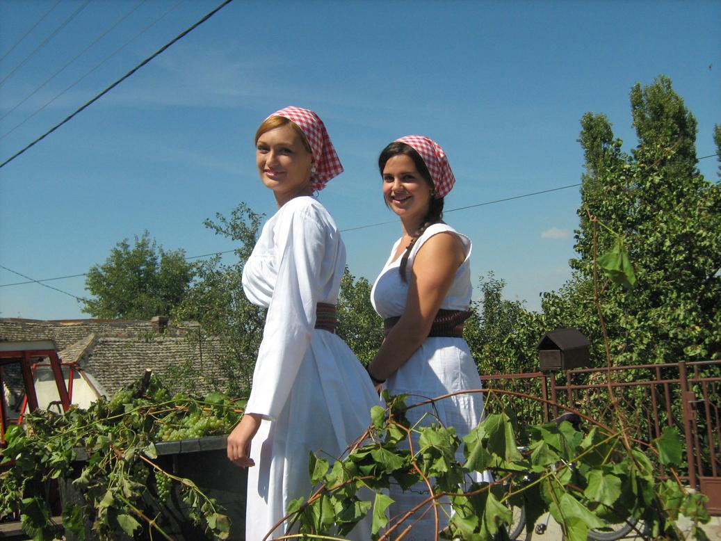 Srpski manastiri, vina i gastronomija 1