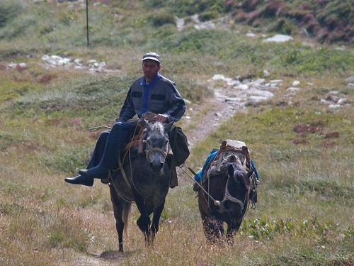 Pelister National Park Macedonia