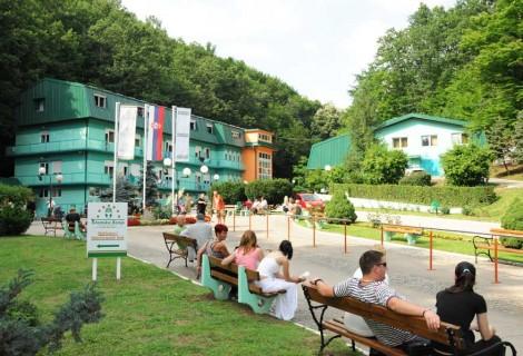 Gornja Trepca Banja Spa