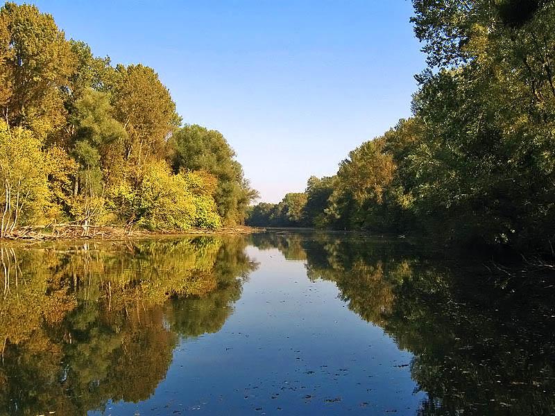 Gornje Podunavlje Specijalni rezervat prirode