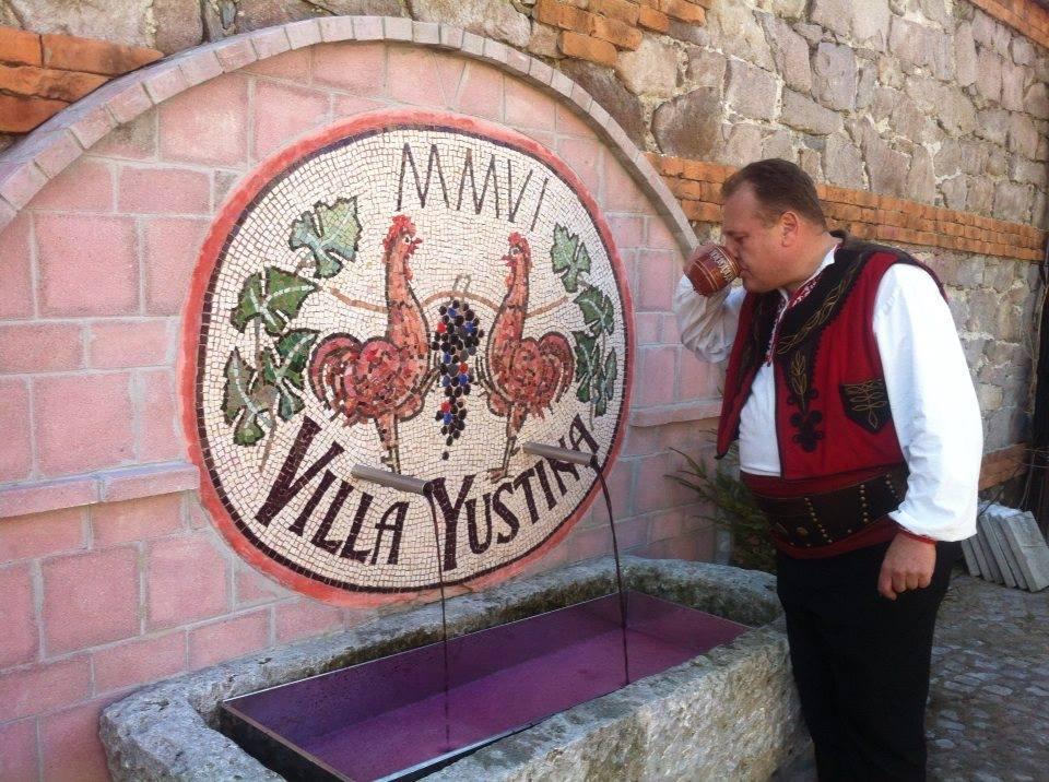 Yustina Villa Ustina village Plovdiv