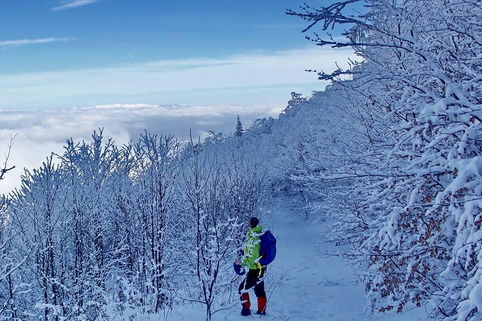 Radocelo Mountain