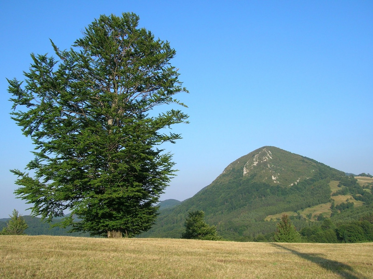 Povlen Mountain