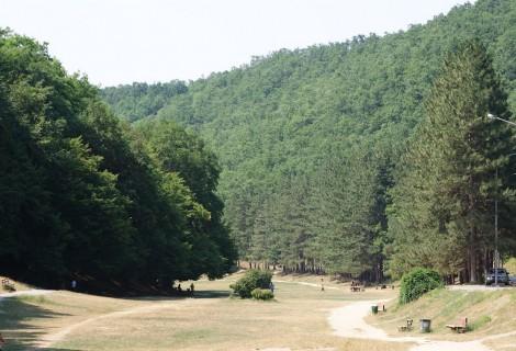 Planina Grmija