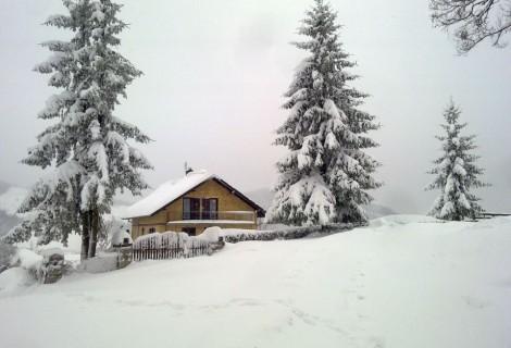 Vila Milica selo Trudelj seoski turizam 013 Gornji Milanovac