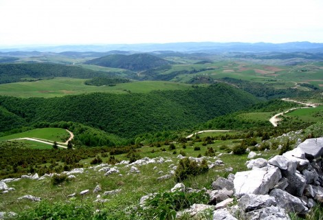 Javor Mountain