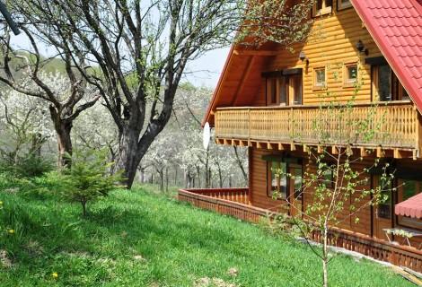 Carpathian Log Home Bran