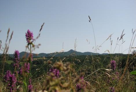 Majdan rural tourism 024 Gornji Milanovac