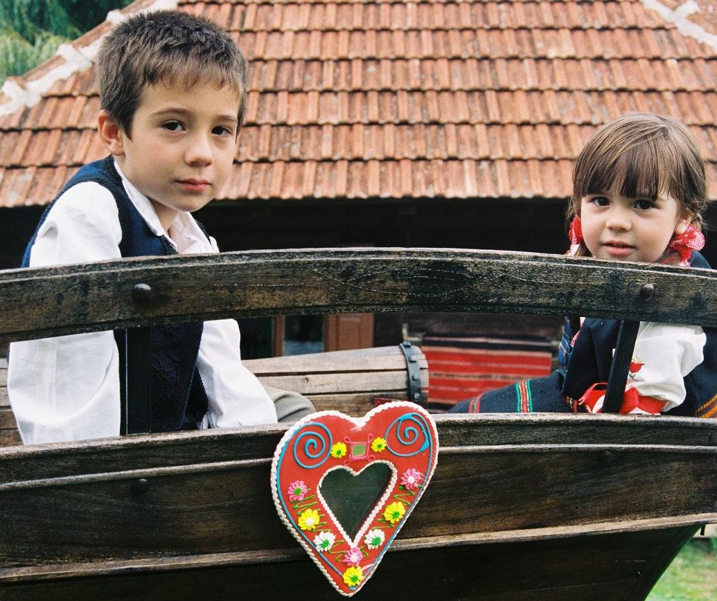 Selo Zlakusa seosko domaćinstvo 090 Užice
