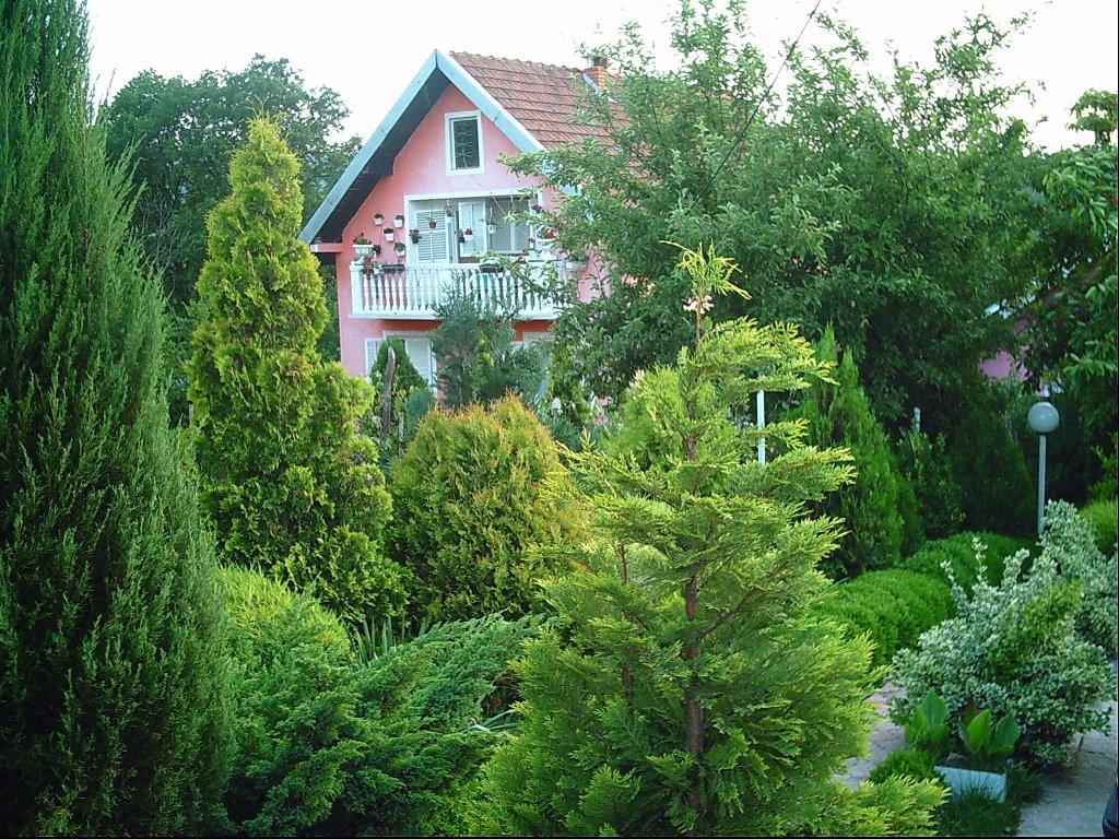 Donji Milanovac seosko domacinstvo 106