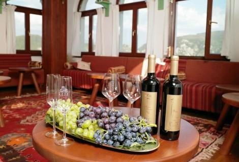 Popova Kula Winery and Hotel Demir Kapija