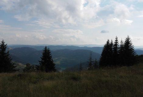 Ekspedicija u divljini planine Golije i Ivanjice