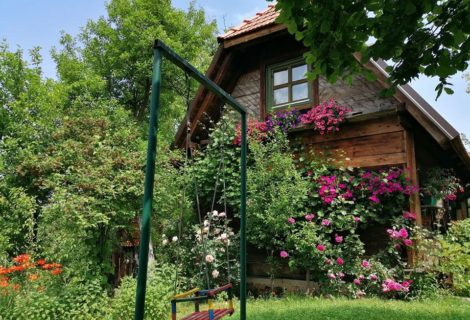 Belino Sokace Rural Tourist Household Uzice