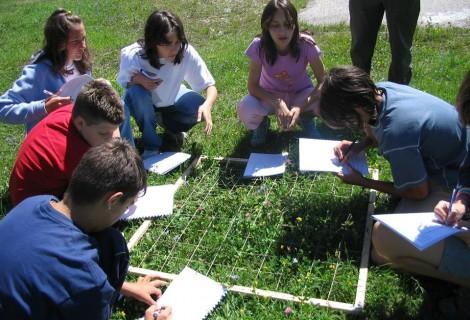 Young Researchers Tour Viminacium Park