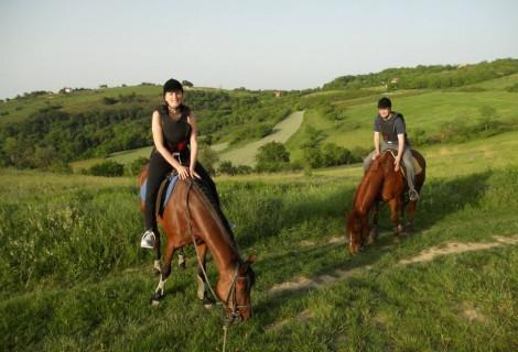 Horse back riding in Fruska Gora Mt