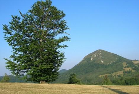 Planina Povlen