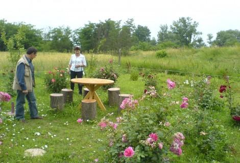 Morava Garden Rural Household Koncarevo village Jagodina