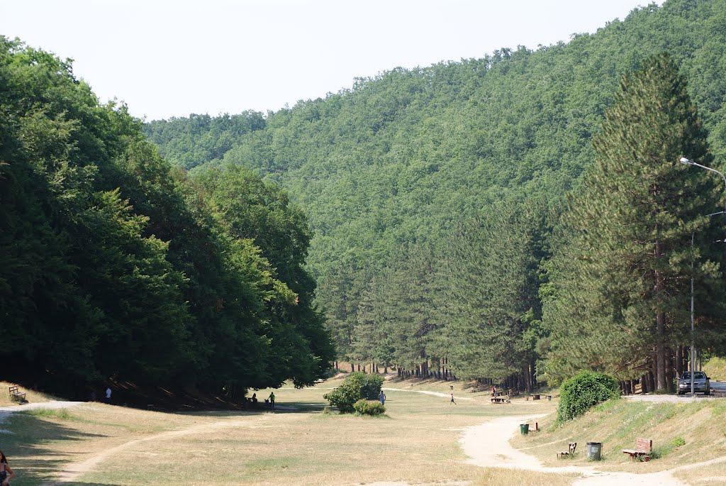 Grmija Mountain