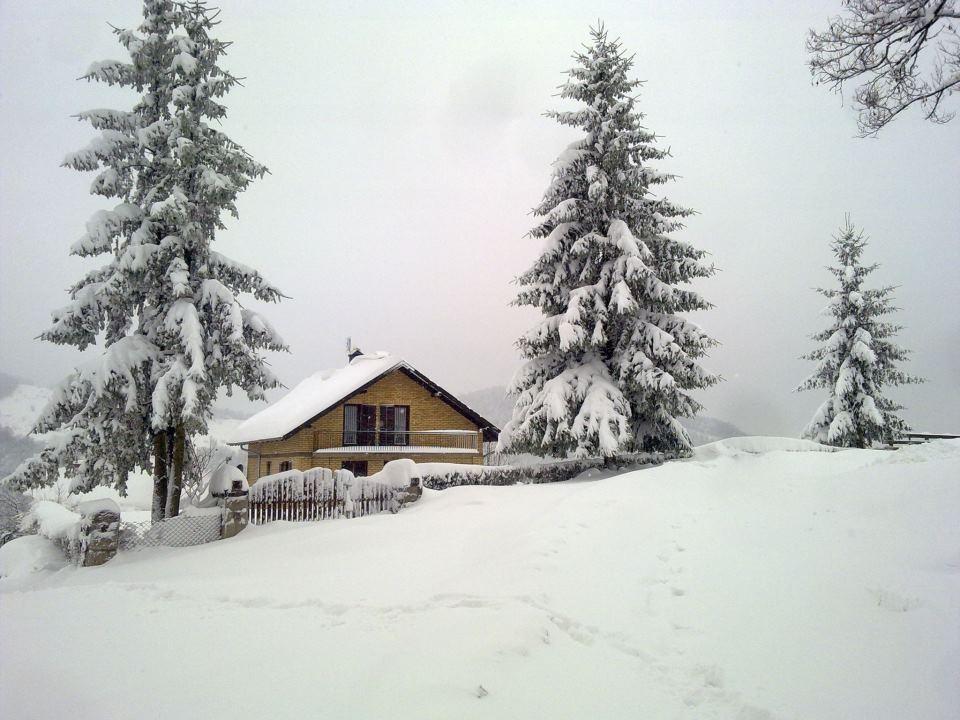 Trudelj Villa Milica rural tourism 013 Gornji Milanovac