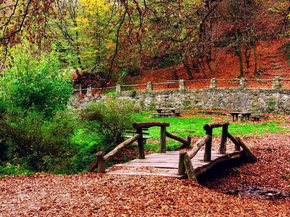 Nacionalni Park Fruška Gora