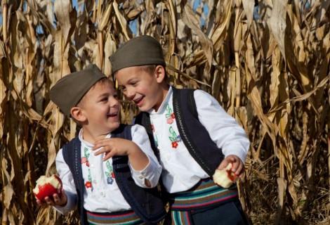 Arilje Rural Tourist Household 165