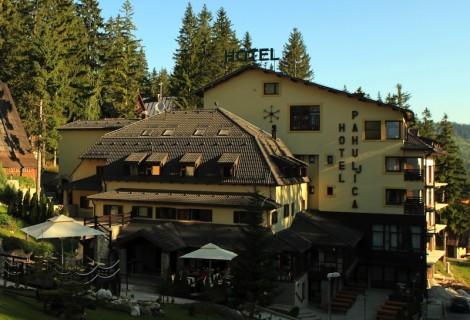 Pahuljica Hotel Vlasic Mountain