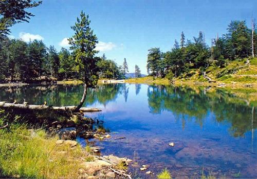 Image result for parku i lURES, photo