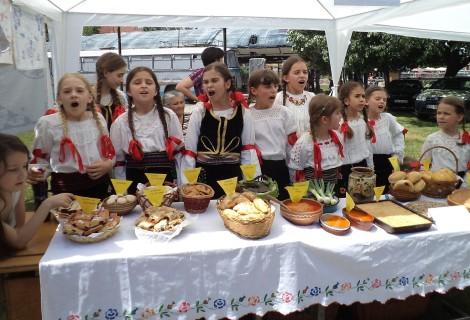 Crnajka rural tourism Household 110