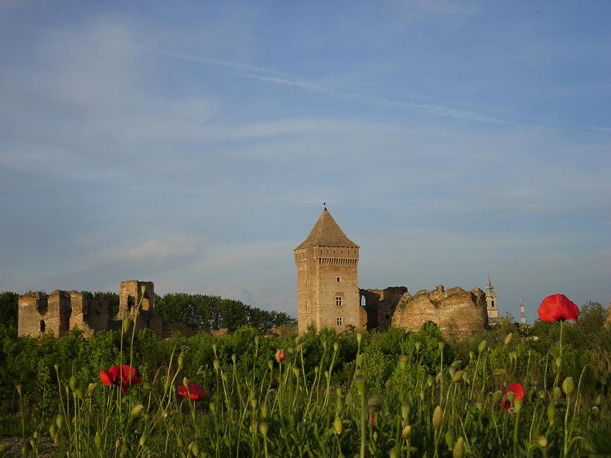 Bac Fortress