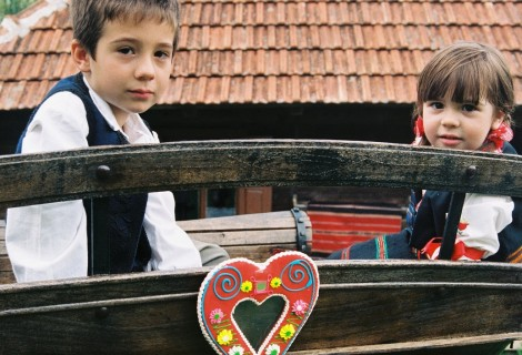 Zlakusa rural household Terzica avlija 090