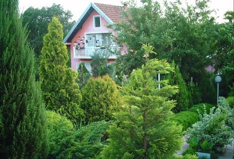 Donji Milanovac rural tourism Property 106