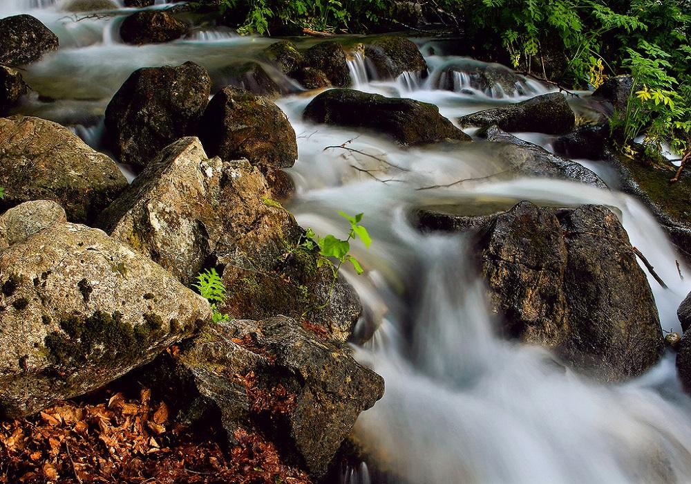Reka Beli Drim