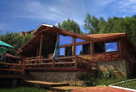 Vlasina Lake Villa accommodation property 098