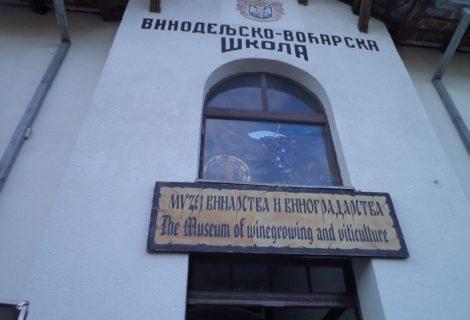 Viticulture and Wine Museum Aleksandrovac
