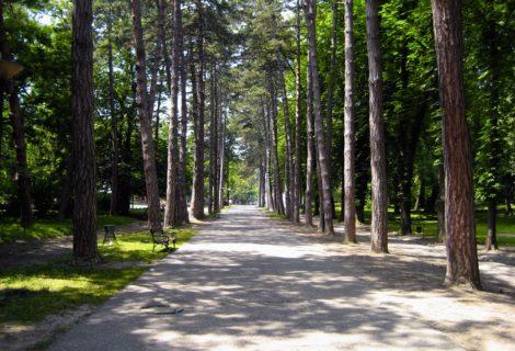 Bukovička Banja Aranđelovac