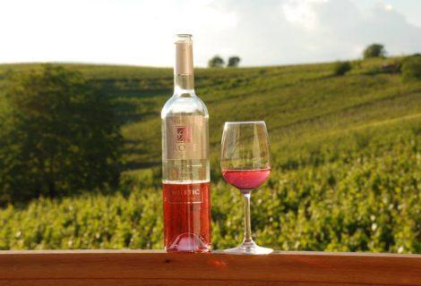 Miletic Winery Oparic