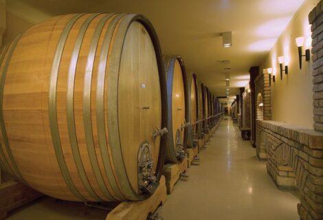 Aleksandrovic Winery Topola