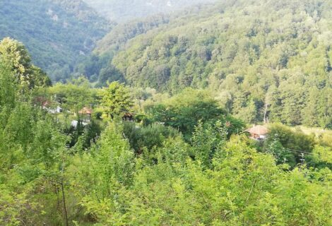 Plavi vajat rustic apartment accommodation – Blue Chalet Gornje Leskovice village Valjevo