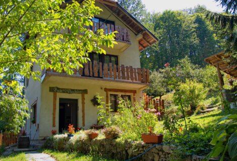 Arilje rustic Ravijojla Villa to rent 147