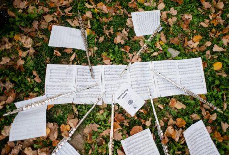 Kamp flaute muzikAkcija